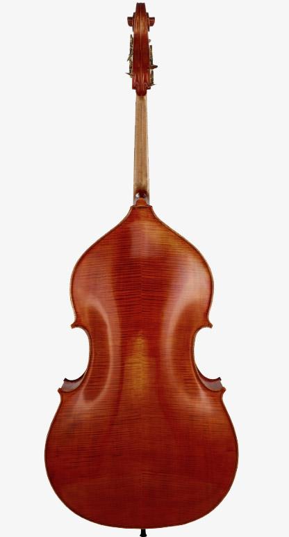 低音提琴背板