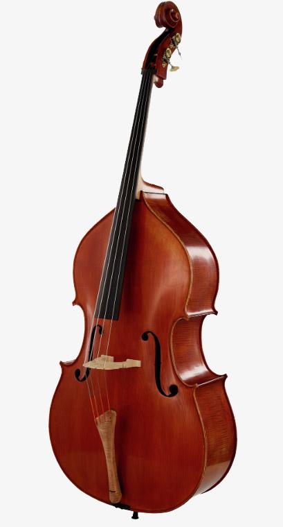 高档欧料低音提琴