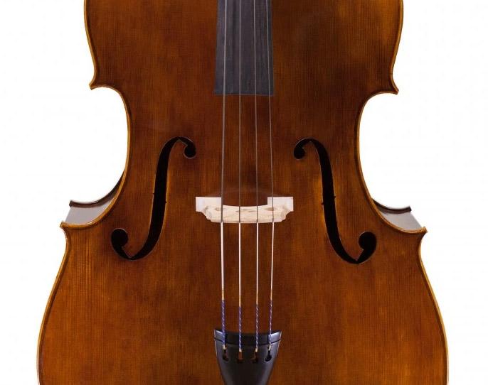 低音提琴面板