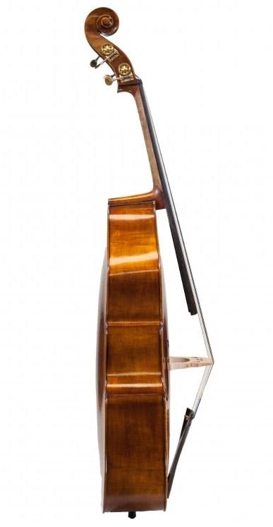 低音提琴侧板