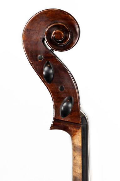 大提琴琴头