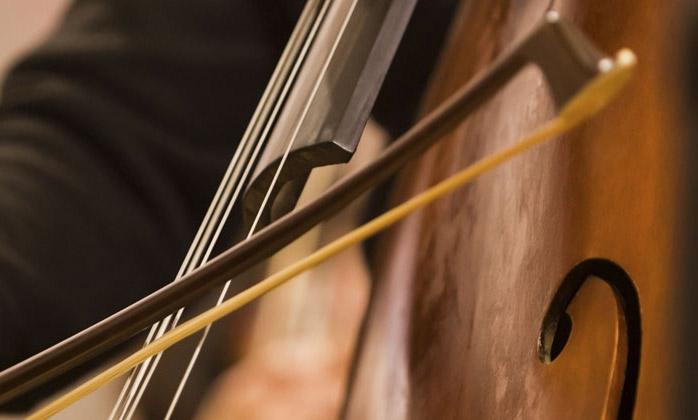 如何更换大提琴的琴弦