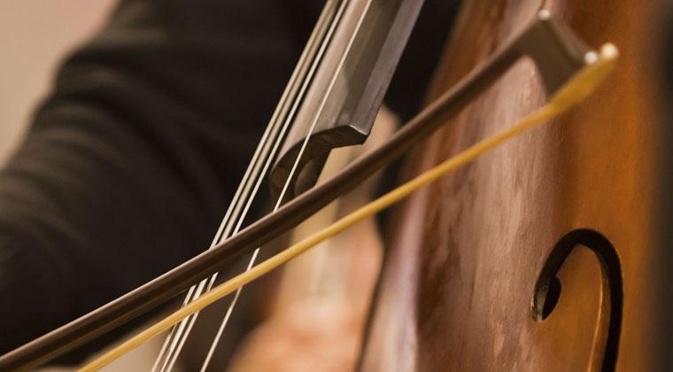 什么是独奏规格的低音弦