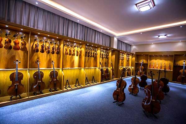大提琴初学者应该买多少钱一把的琴?