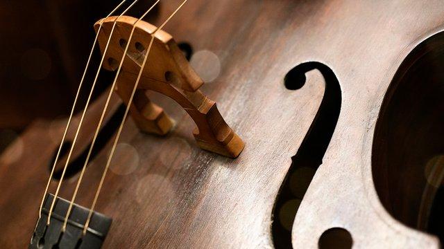 如何自学拉大提琴?这几个方法你要知道