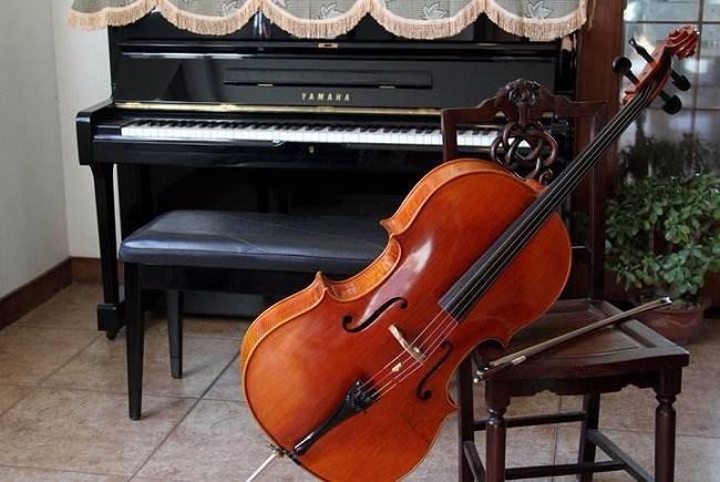 深圳大提琴老师,张华提琴工作室