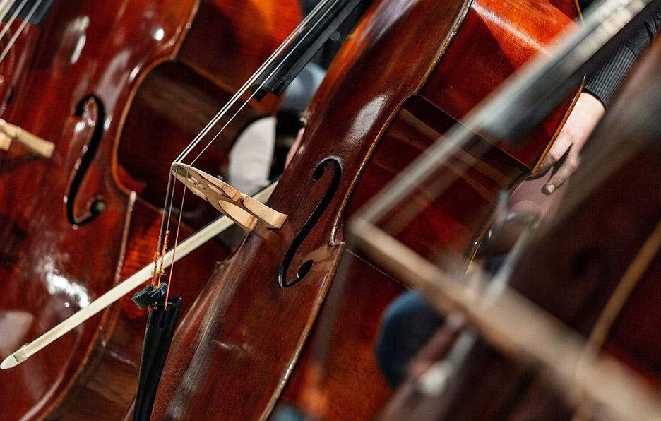 我应该为孩子购买哪种大提琴?