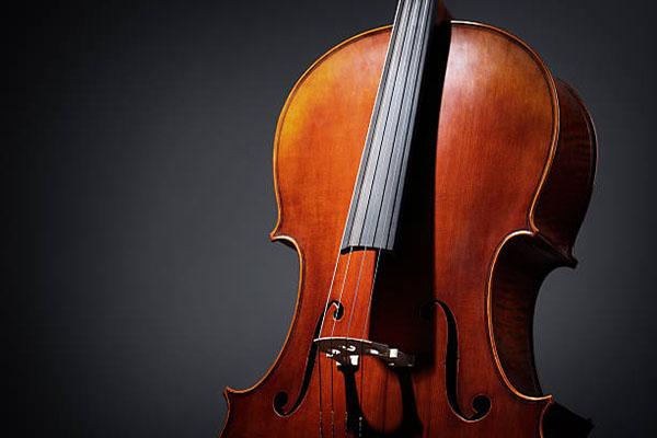 大提琴是由什么做成的呢?