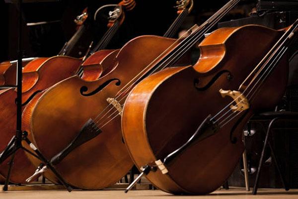 现在是低音提琴普及和发展的最好时机