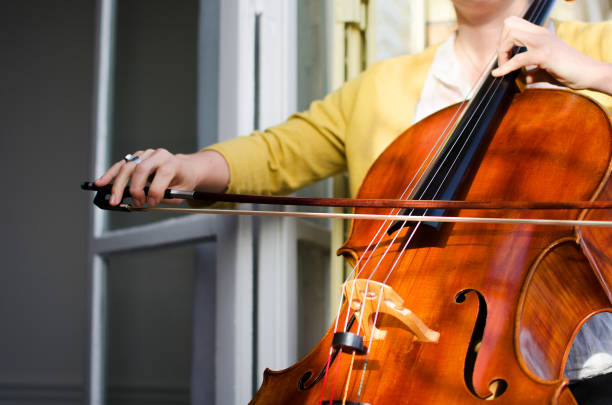 大提琴琴弦多久换一次比较合适?