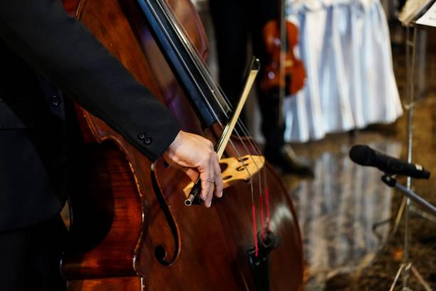 上海低音提琴老师,一对一教学