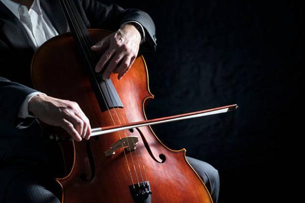 手工欧料大提琴