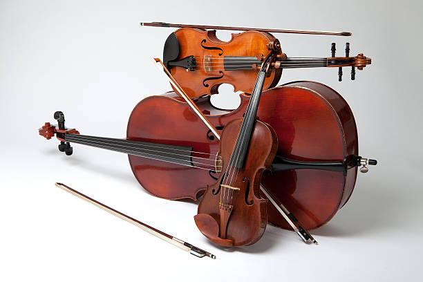 上海大提琴老师哪里有,收费标准是什么?