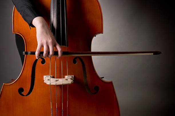 怎样正确掌握低音提琴的拉奏技巧
