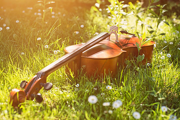 拉大提琴如何提高音准