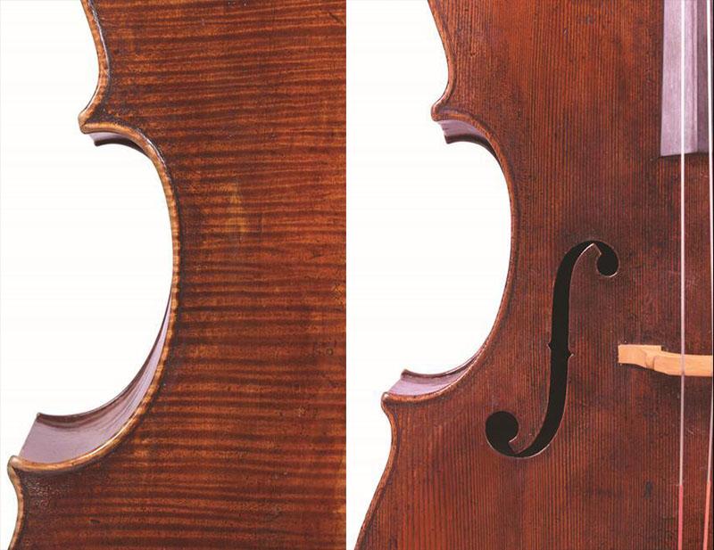 安德里亚·瓜奈里大提琴中间部分