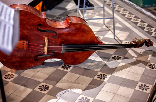 深圳交响乐团低音提琴老师,谈教学和演奏