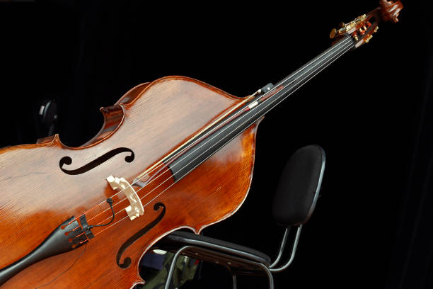 学习低音提琴的好处有哪些?