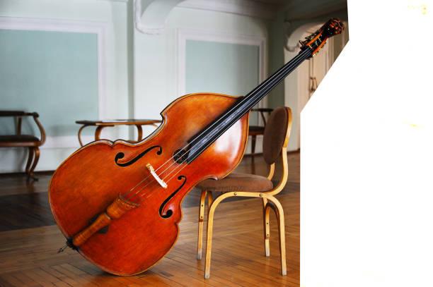 大提琴如何进行保养维护