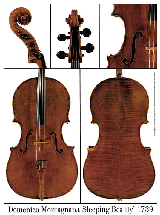 ·蒙塔尼亚纳大提琴